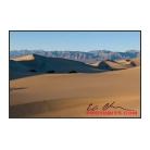 Rolling Sand Dunes